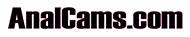www.analcams.com